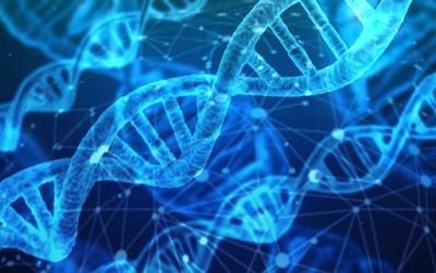 FUT2 : découvrez comment vos gènes influencent votre microbiote