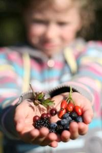 Alimentation sante enfants environnement 8