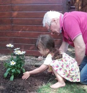 jardinage salir terre