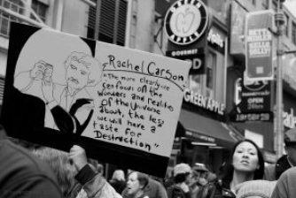 Rachel Carson printemps silencieux 6