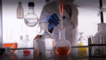 Nouveaux poisons perturbateurs endocriniens