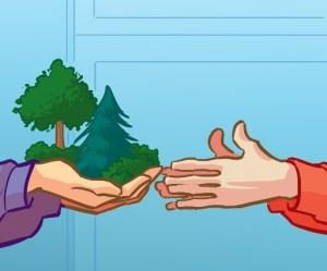 enfants grimper arbres - donner envie