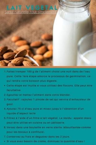 Recette facile de lait végétal