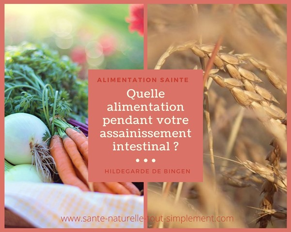 assainissement-intestinal-hildegarde-de-bingen-alimentation