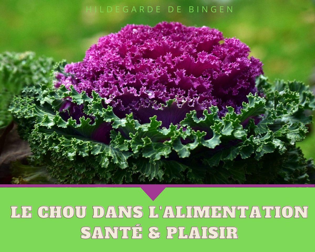 LE CHOU DANS L'ALIMENTATION D'HILDEGARDE DE BINGEN