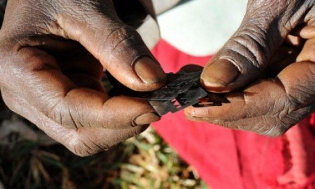 Guinée : »L'excision va bon train»