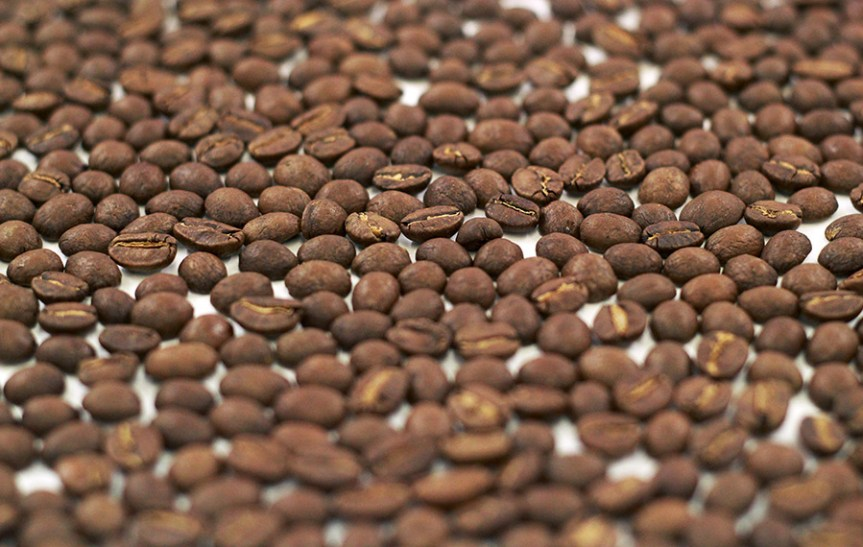 Jamaican Blue Mountain coffee beans. Ingredients in chocolate
