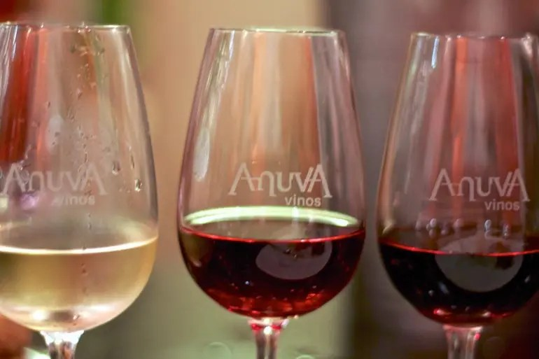 Anuva Wine Glasses