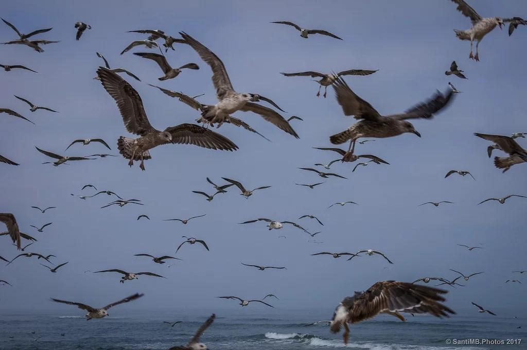 Congestión aérea