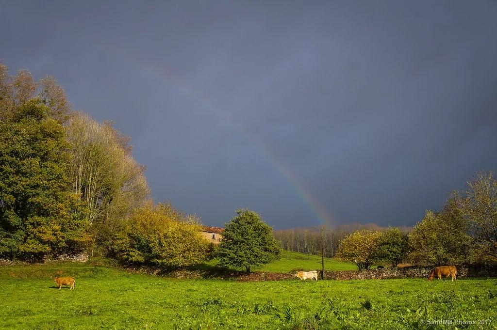 Bajo el arco-iris