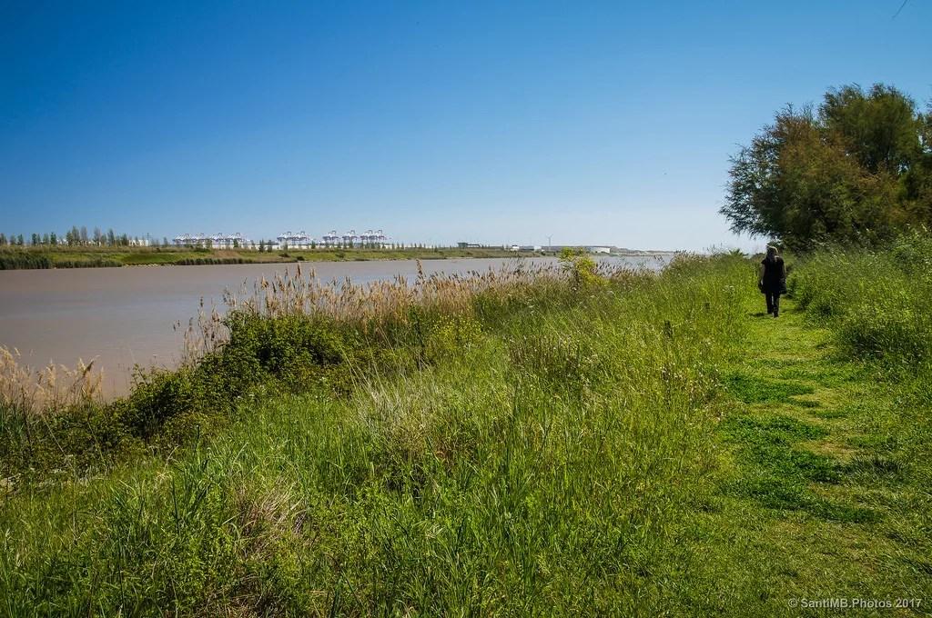 Por la orilla del río