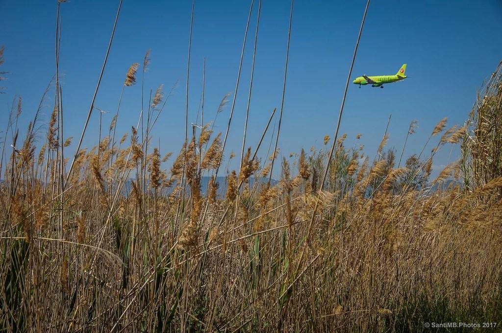 El avión verde