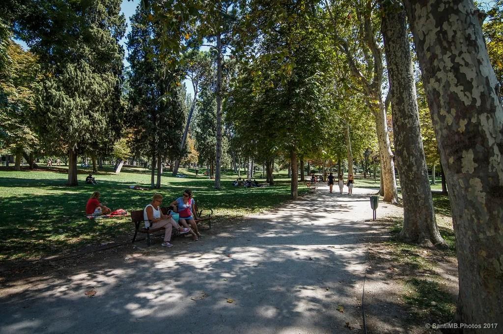 Una mañana en el parque