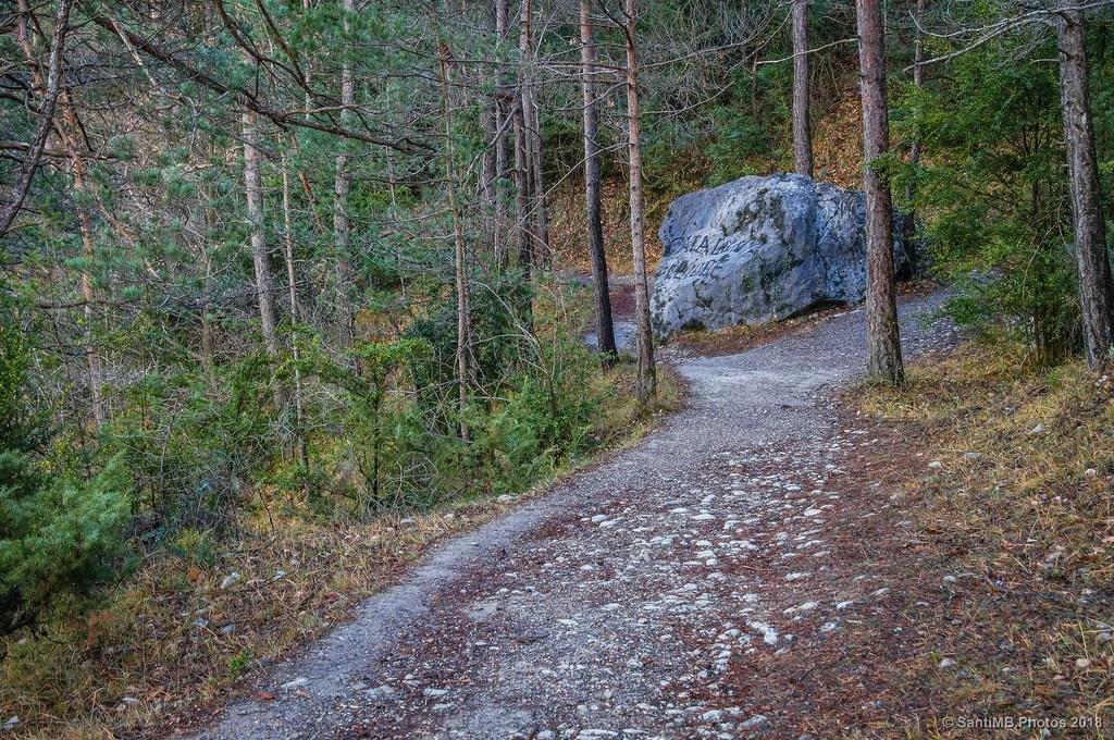 Una piedra en el camino
