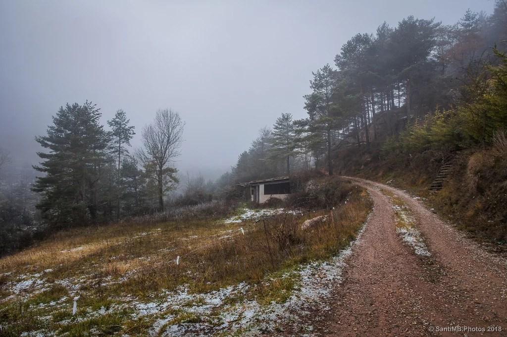 Lo que la niebla oculta