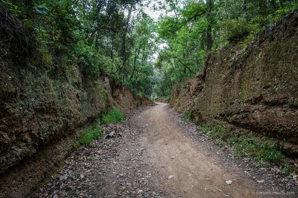 El camino empotrado