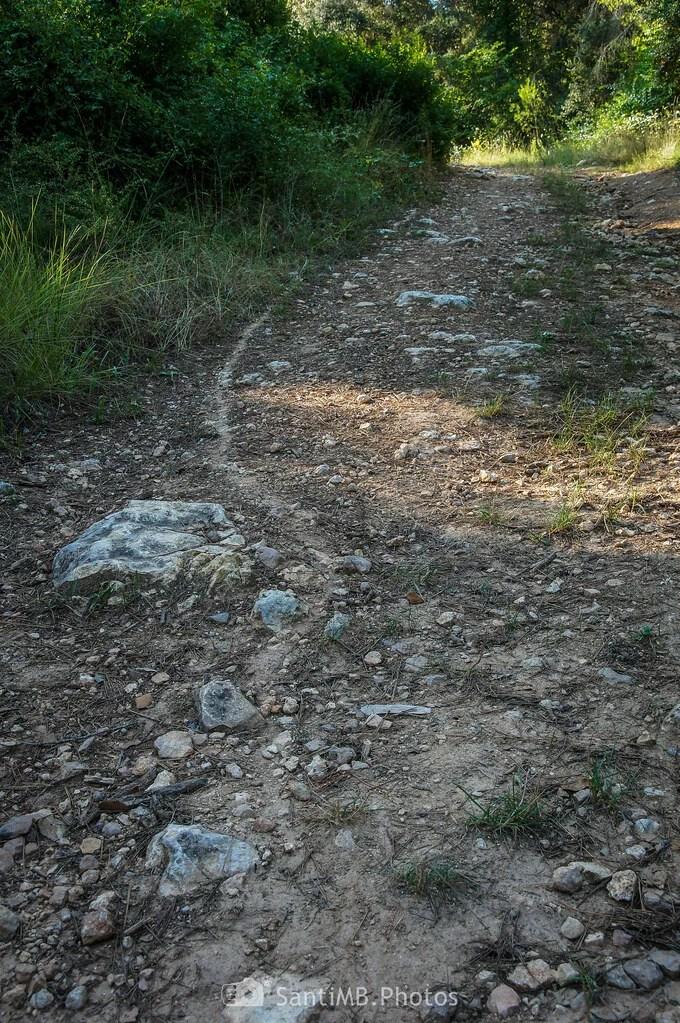 Camino sobre camino