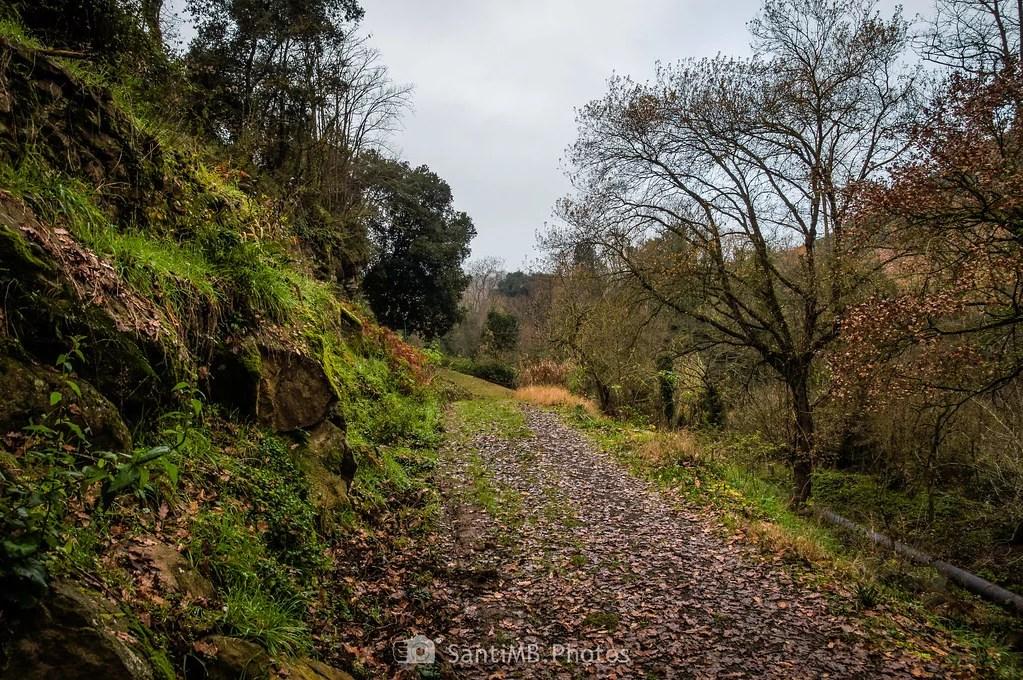 El camino a la cantera