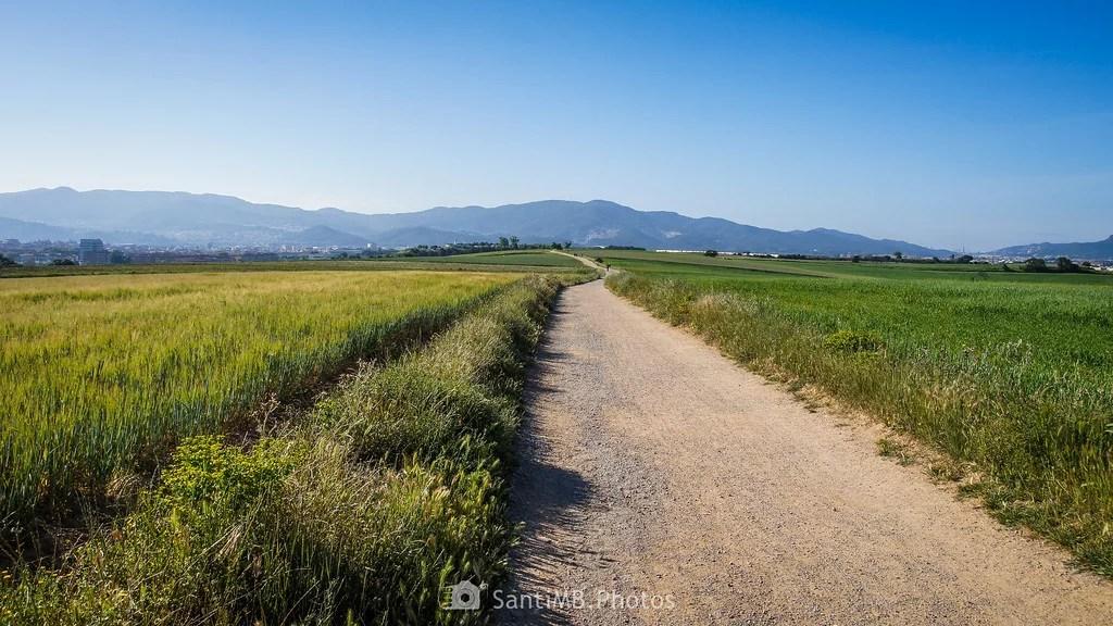 El largo camino