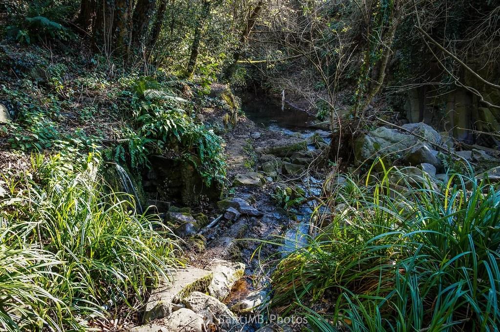 Fuente junto al río