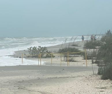 Tropical Storm Cristobal brought high tides that washed away several sea turtle nests. SCCF photo