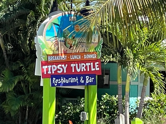 'Tipsy Tortoise' Night Supports CROW