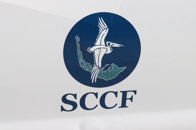 SCCF Has a Sea Turtle Sightings App