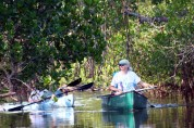 Wildlife admirers paddle through the mangrove forests.