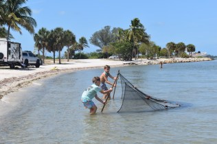 Students are using a seine net. Photo provided