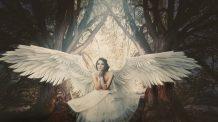 Anjo Número 89 Significado: Prosperidade na Caridade