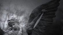 Significado e simbolismo do anjo número 7007