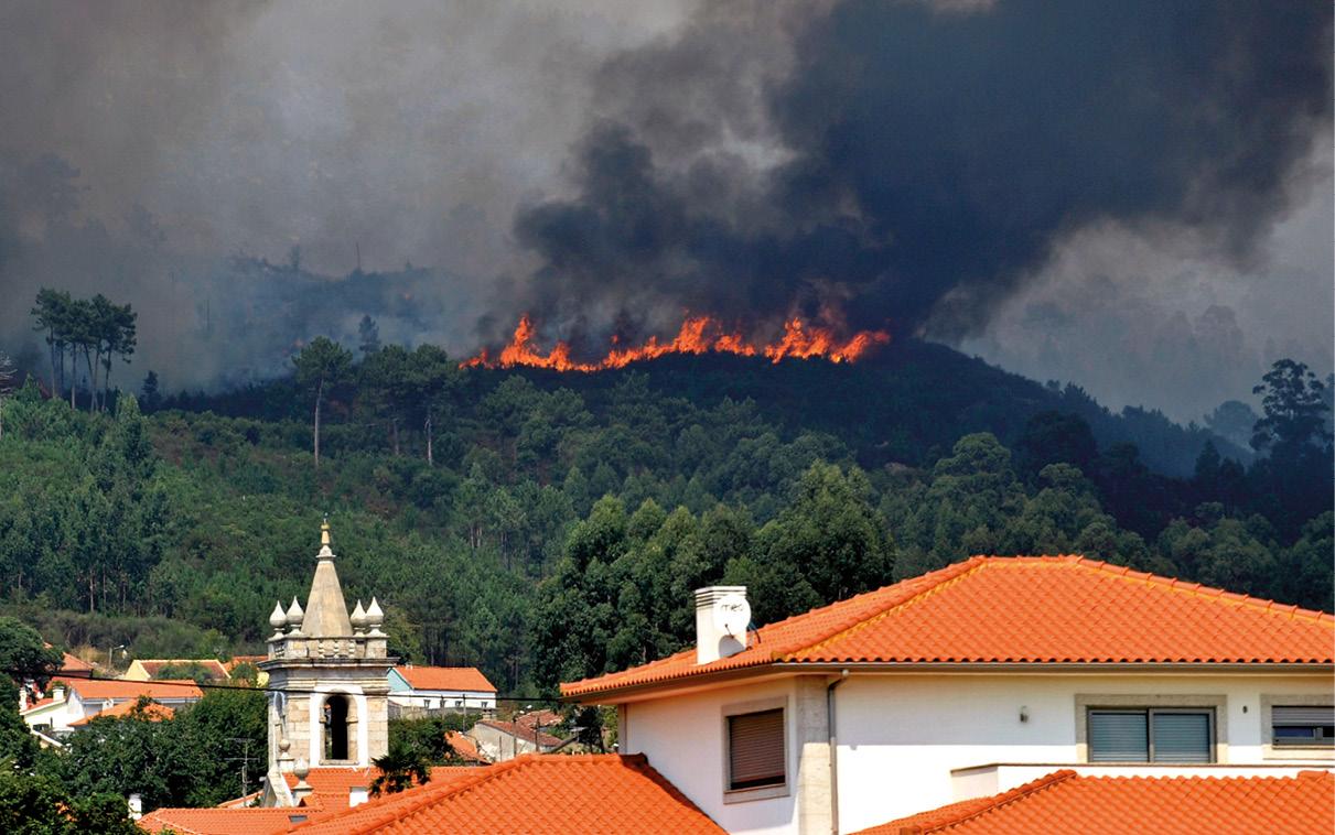 As chamas lavram numa encosta durante um incêndio em Vila Praia de Âncora, no concelho de Caminha, 3 de setembro de 2013. ARMENIO BELO/LUSA