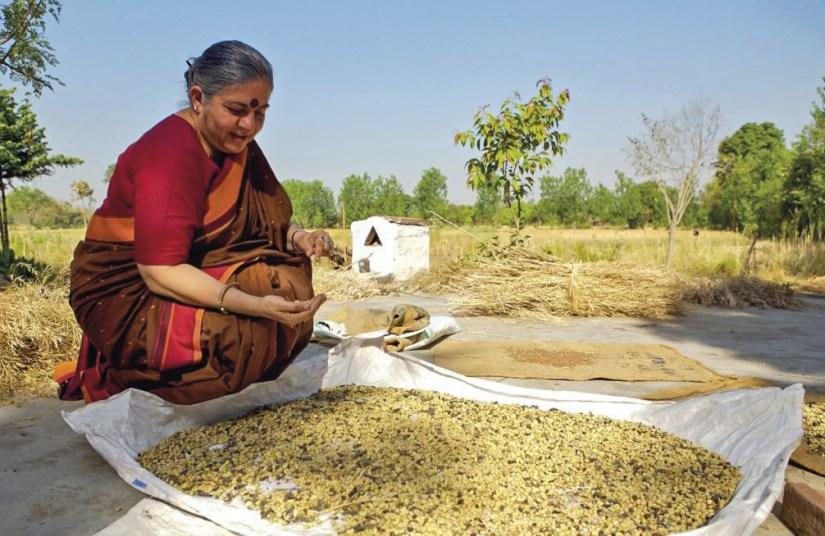 Vandana Shiva: Sementes livres (Seed freedom): um Imperativo ético e ecológico. Foto https://towardfreedom.org