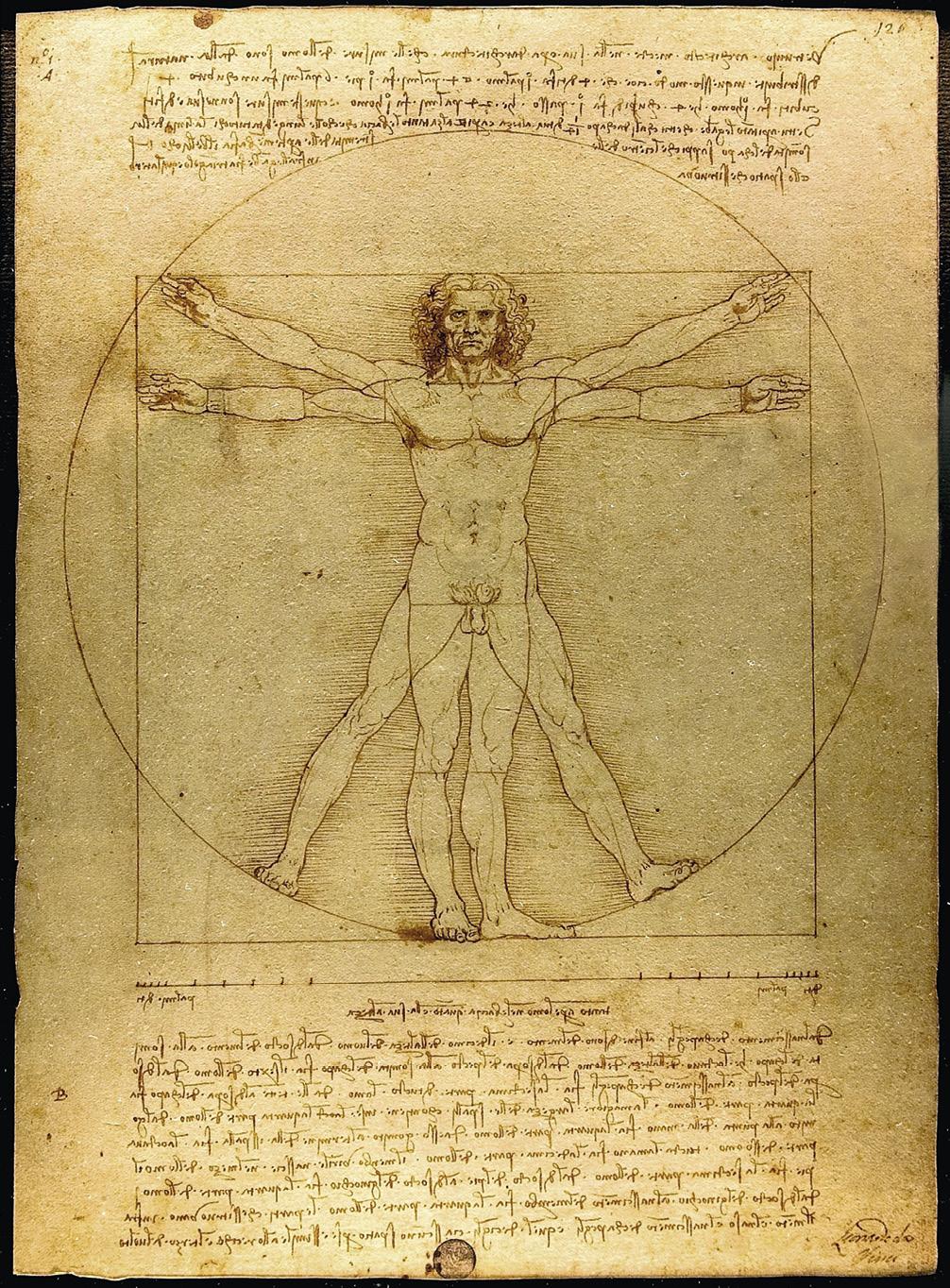 O Homem Vitruviano, desenho famoso pelo estudo das proporções. Faz parte das notas do artista feitas por volta do ano de 1490 num dos seus diários.