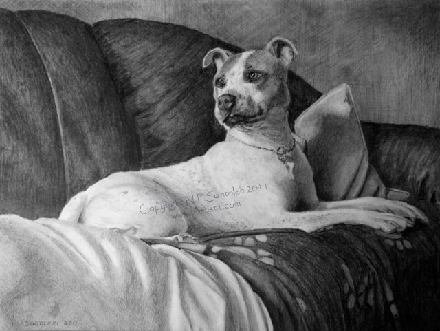 Open Edition Prints of Dog Blankets pencil drawing by Santoleri