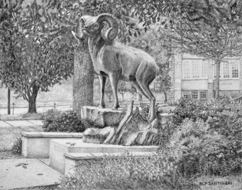 University art prints of Standing Guard a pencil drawing by Nick Santoleri