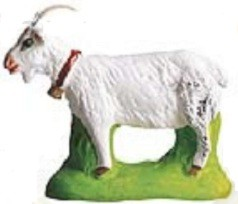 Chevre (Goat) brown, white or gray