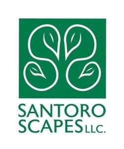 Landscape Design Questionnaire Santoro Scapes