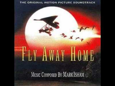 Fly Away Home Soundtrack – 10,000 Miles (With Lyrics)