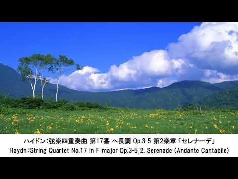 朝、目覚めに心地よい~活力が出るクラシック名曲集・Morning Classical Music Collection(長時間作業用BGM)