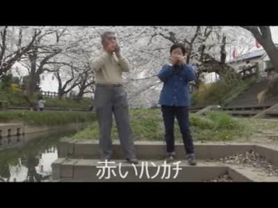 ハーモニカ演奏 桜の木の下で 演歌 13曲