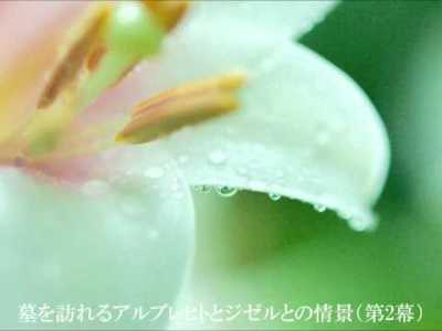 アダン: バレエ音楽「ジゼル」セレクション[ナクソス・バレエ・クラシック]