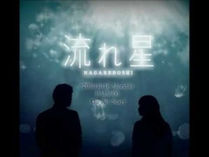 Nagareboshi 流れ星