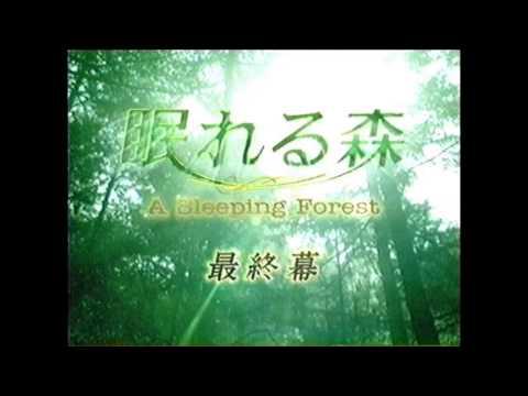 眠れる森 (A Sleeping Forest) サントラ ドラマ -Road-