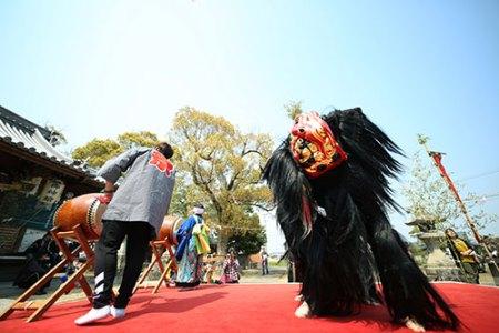新羅神社 春祭り [ 2019/04/07(日) ]