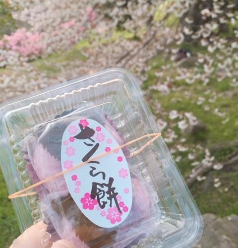 """""""死ぬまでに行きたい絶景""""に選ばれた紫雲出山。感動、桜の絶景と『絶景茶屋』の「桜餅」"""