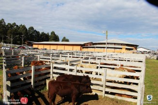 Sindicato Rural_2018 (58)