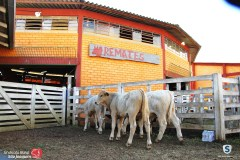 Sindicato Rural_2018 (61)