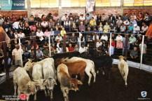Sindicato Rural_2018 (66)