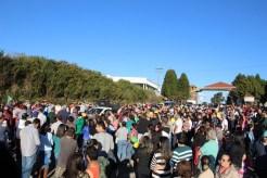 Manifestantes (29)